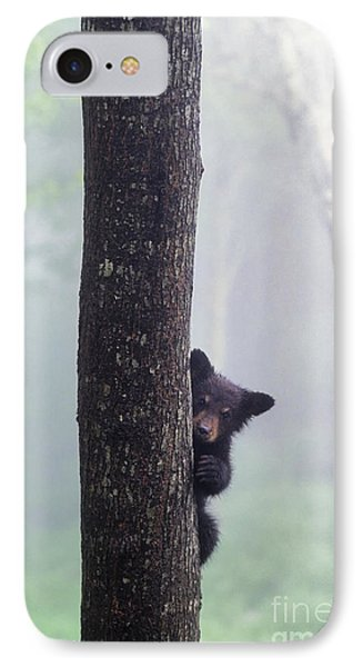 Bashful Bear Cub - Fs000230 IPhone Case