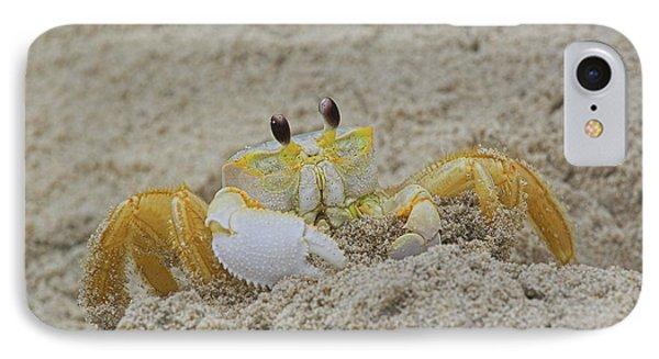 Beach Crab In Sand IPhone Case