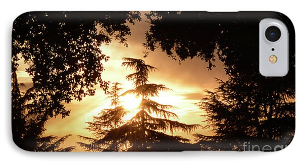 Beaumont Sunset IPhone Case