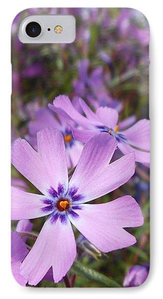 Beautiful Creeping Purple Phlox IPhone Case