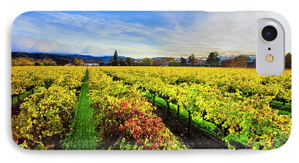 Beauty Over The Vineyard IPhone Case