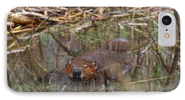 Beaver Look IPhone Case