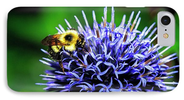 Bee And Thistle IPhone Case