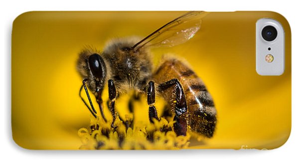 Bee Enjoys Collecting Pollen From Yellow Coreopsis IPhone Case