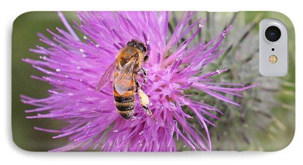 Bee On Purple Thistle IPhone Case