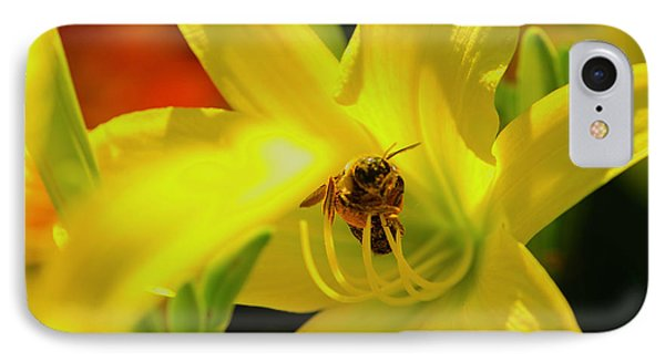 Bee On Yellow Lilly IPhone Case