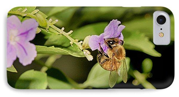Bee Taking Pollen IPhone Case