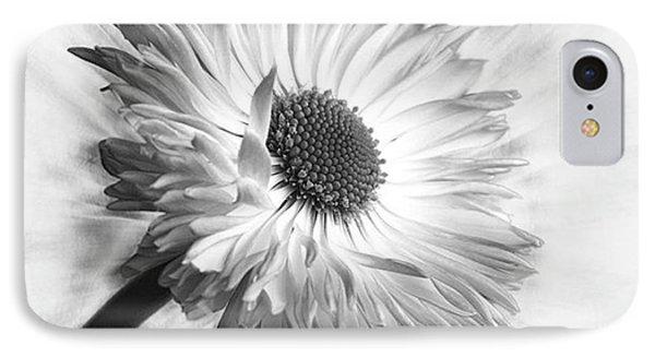 Bellis In Mono  #flower #flowers IPhone Case