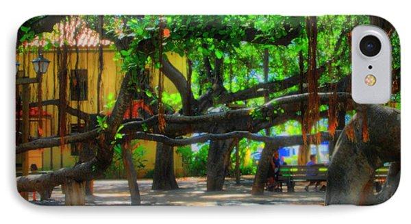 banyan tree case
