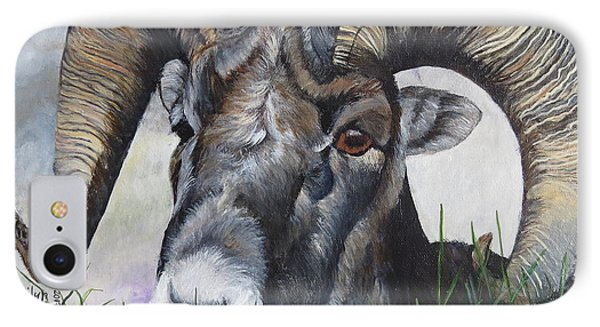 Big Horned Sheep IPhone Case