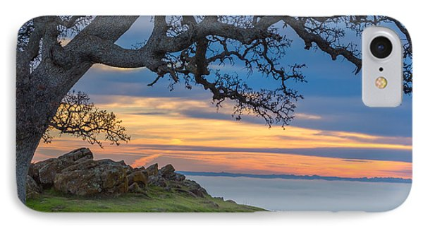 Big Oak Above Fog IPhone Case