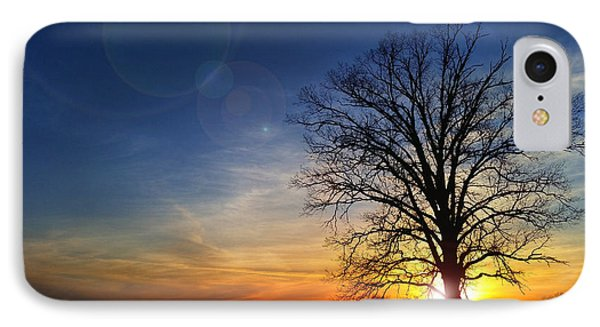Big Oak Splendor IPhone Case
