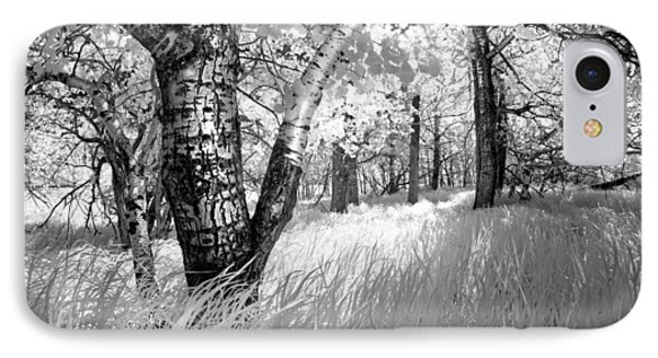 Birch In The Tall Grass IPhone Case