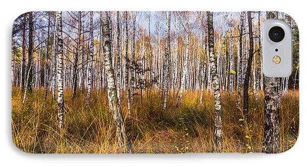 Birches And Grass IPhone Case