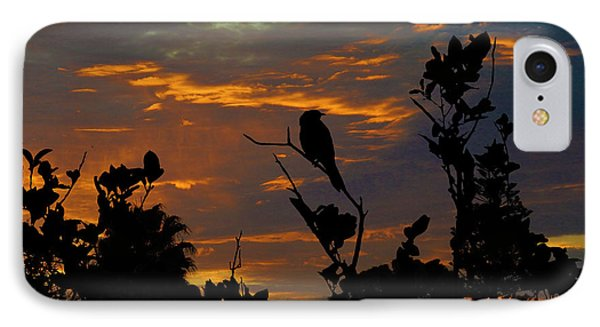 Bird At Sunset IPhone Case
