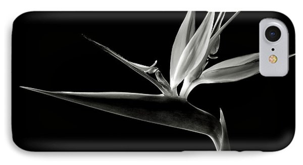 Bird Of Paradise In Black And White IPhone Case