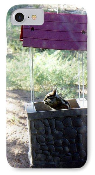 Bird Seed Thief Chipmunk IPhone Case
