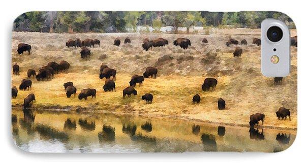 Bison At Indian Pond IPhone Case