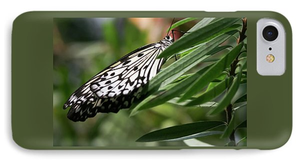 Black And White Butterfly -  IPhone Case