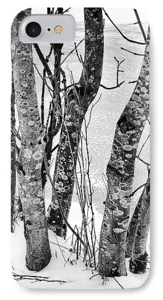 Black And White Trees IPhone Case
