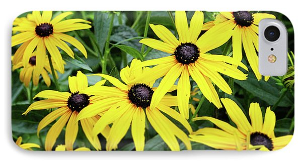 Daisy iPhone 8 Case - Black Eyed Susans- Fine Art Photograph By Linda Woods by Linda Woods
