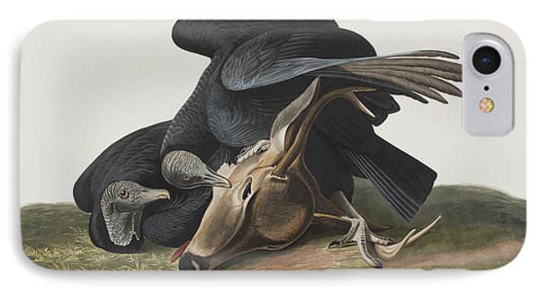 Black Vulture Or Carrion Crow IPhone Case