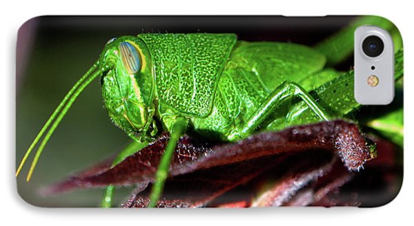 Blue Eyed Green Grasshopper 001 IPhone Case