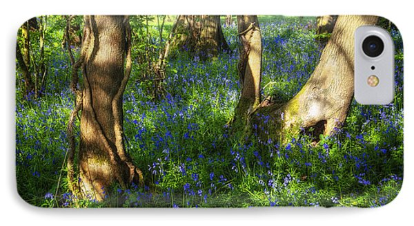 Bluebells In The New Forest IPhone Case