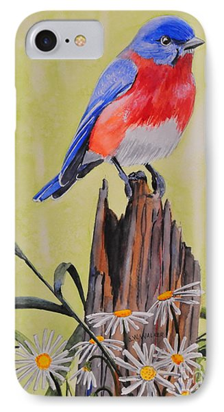 Bluebird And Daisies IPhone Case
