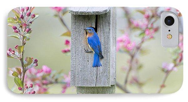 Bluebird Nesting Box IPhone Case
