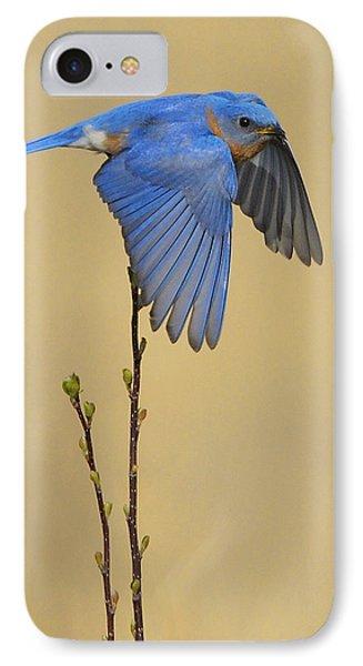 Bluebird Takes Flight IPhone Case