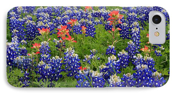 Bluebonnet Indian Painbrush IPhone Case