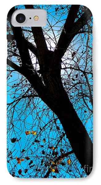 Bosque Silhouette IPhone Case