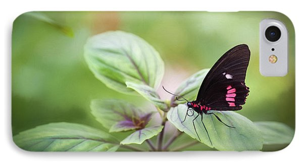 Brave Butterfly  IPhone Case