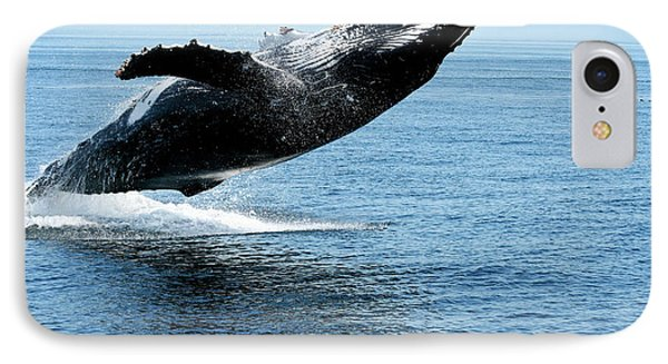 Breaching Humpback Whales Happy-2 IPhone Case