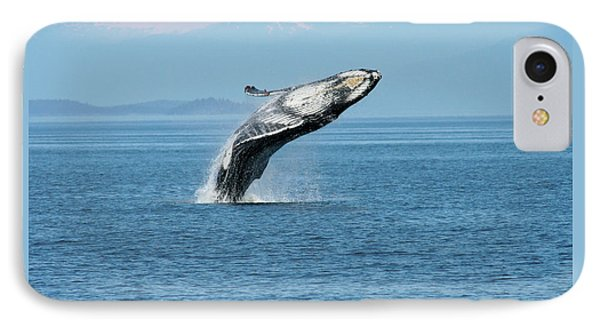 Breaching Humpback Whales Happy-3 IPhone Case
