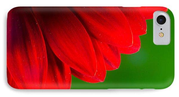 Bright Red Chrysanthemum Flower Petals And Stamen IPhone Case