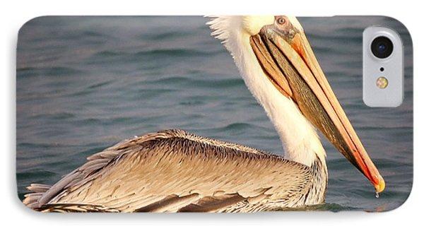 Brown Pelican Floating IPhone Case