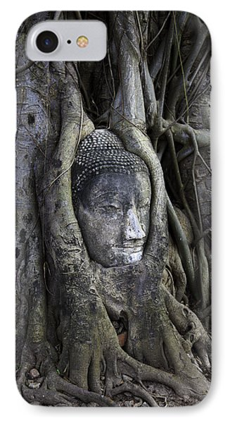Buddha Head In Tree IPhone Case