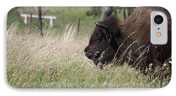 Buffalo Gal 20120724_378a IPhone Case