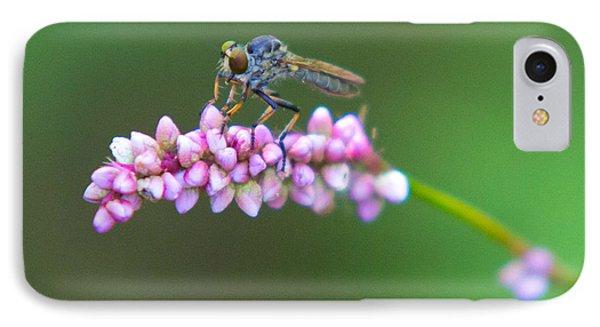 Bug Eyed IPhone Case