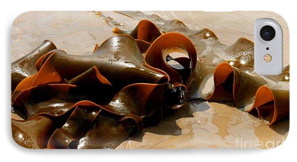 Bull Kelp IPhone Case