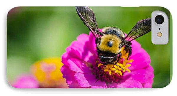 Bumble Bee Macro Image IPhone Case