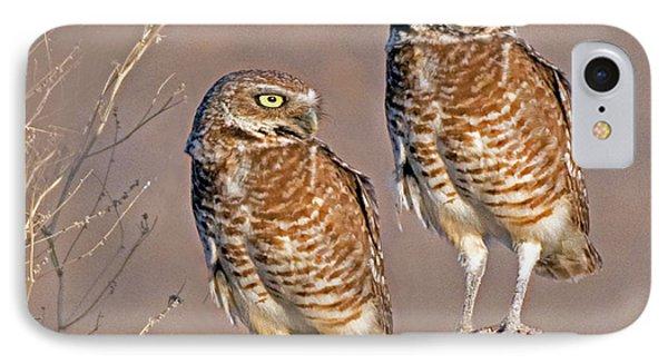 Burrowing Owls At Salton Sea IPhone Case