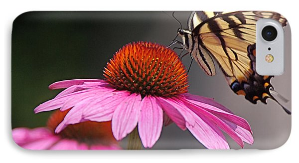Butterfly And Coneflower IPhone Case