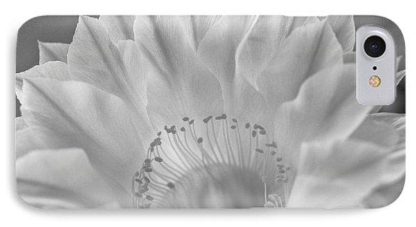 Cactus Bloom Burst IPhone Case