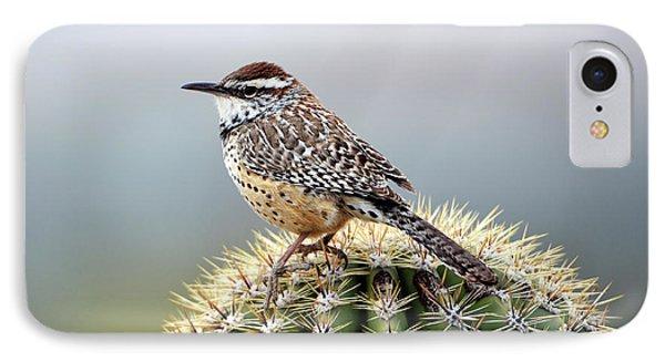 Cactus Wren On Saguaro IPhone Case