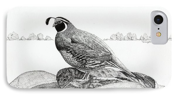 California Valley Quail IPhone Case
