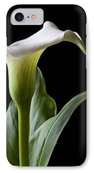 Lily iPhone 8 Case - Calla Lily With Drip by Garry Gay