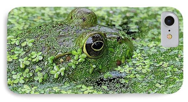 Camo Frog IPhone Case